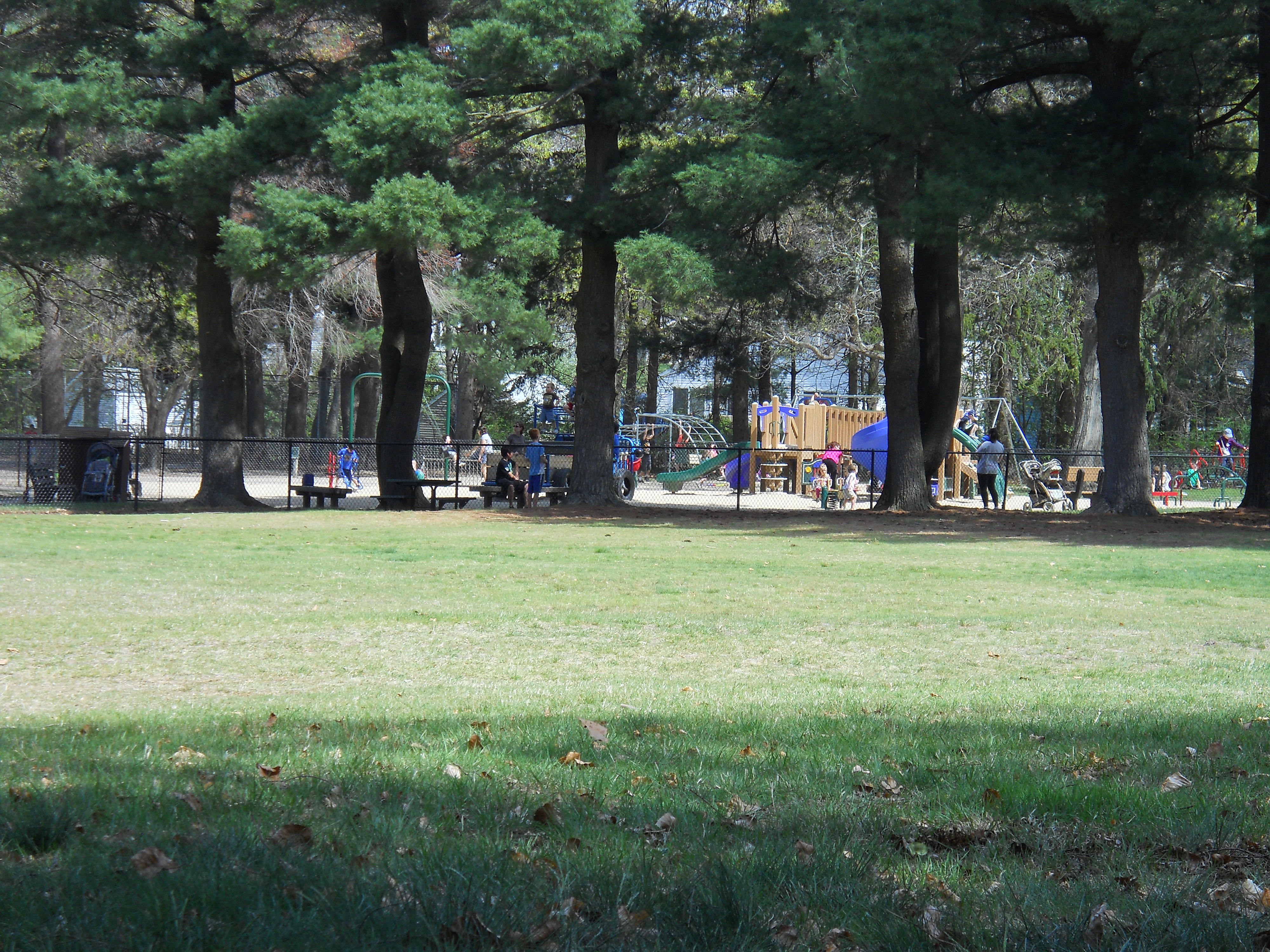 Francis william bird park walpole ma take a day triptake a day playground and childrens area at francis william bird park in walpole ma publicscrutiny Image collections