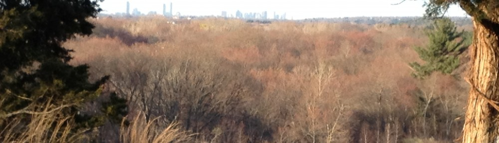 View of Boston from the top of Signal Hill in Norwood, MA.