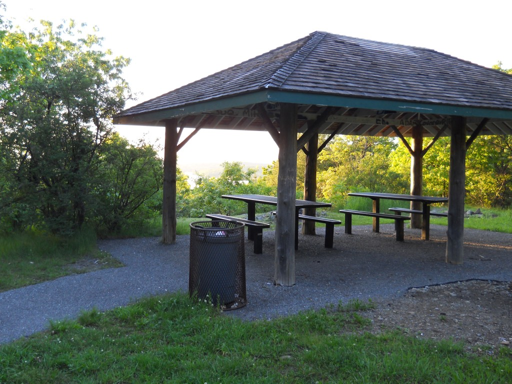 Picnic area at Prospect Hill Park in Waltham.