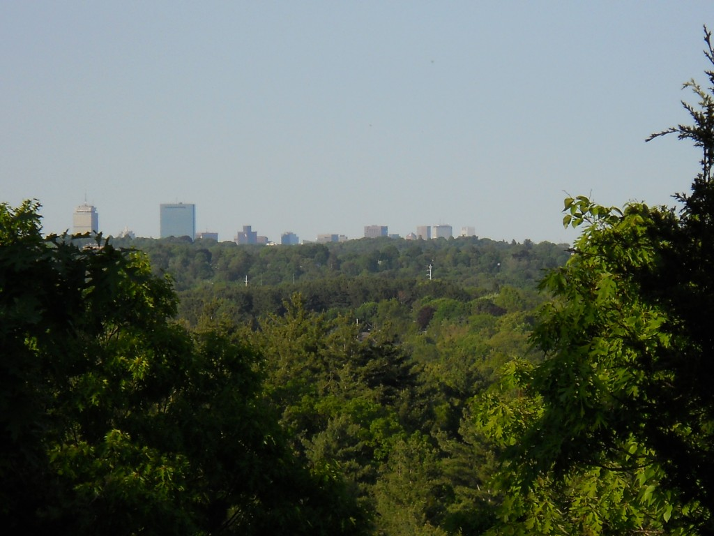 Boston skyline from summit of Wilson Mountain in Dedham, MA