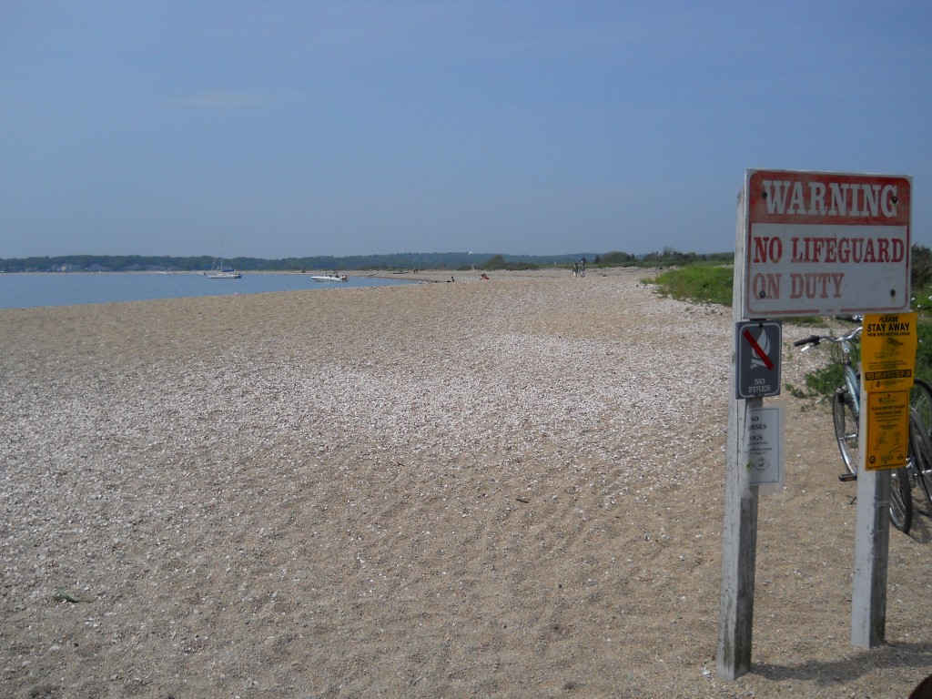 Main Beach at Bluff Point State Park