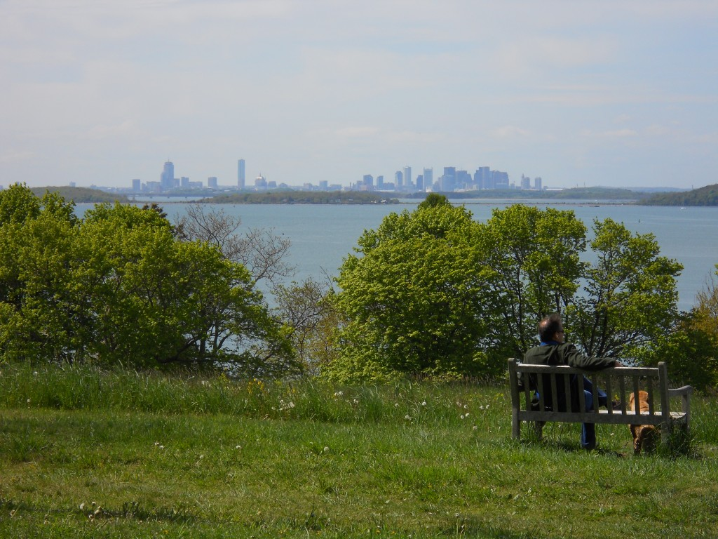 View of Boston Skyline from atop Planters Hill at World's End Reservation in Hingham, MA