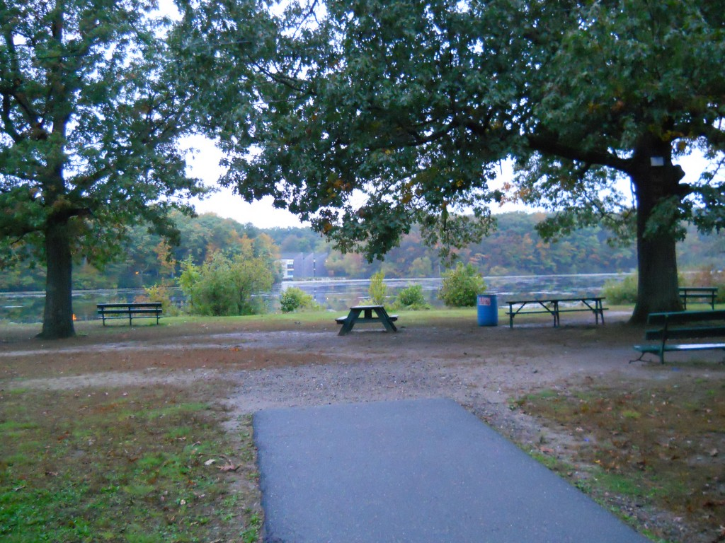 Picnic area at DW Field Park in Brockton