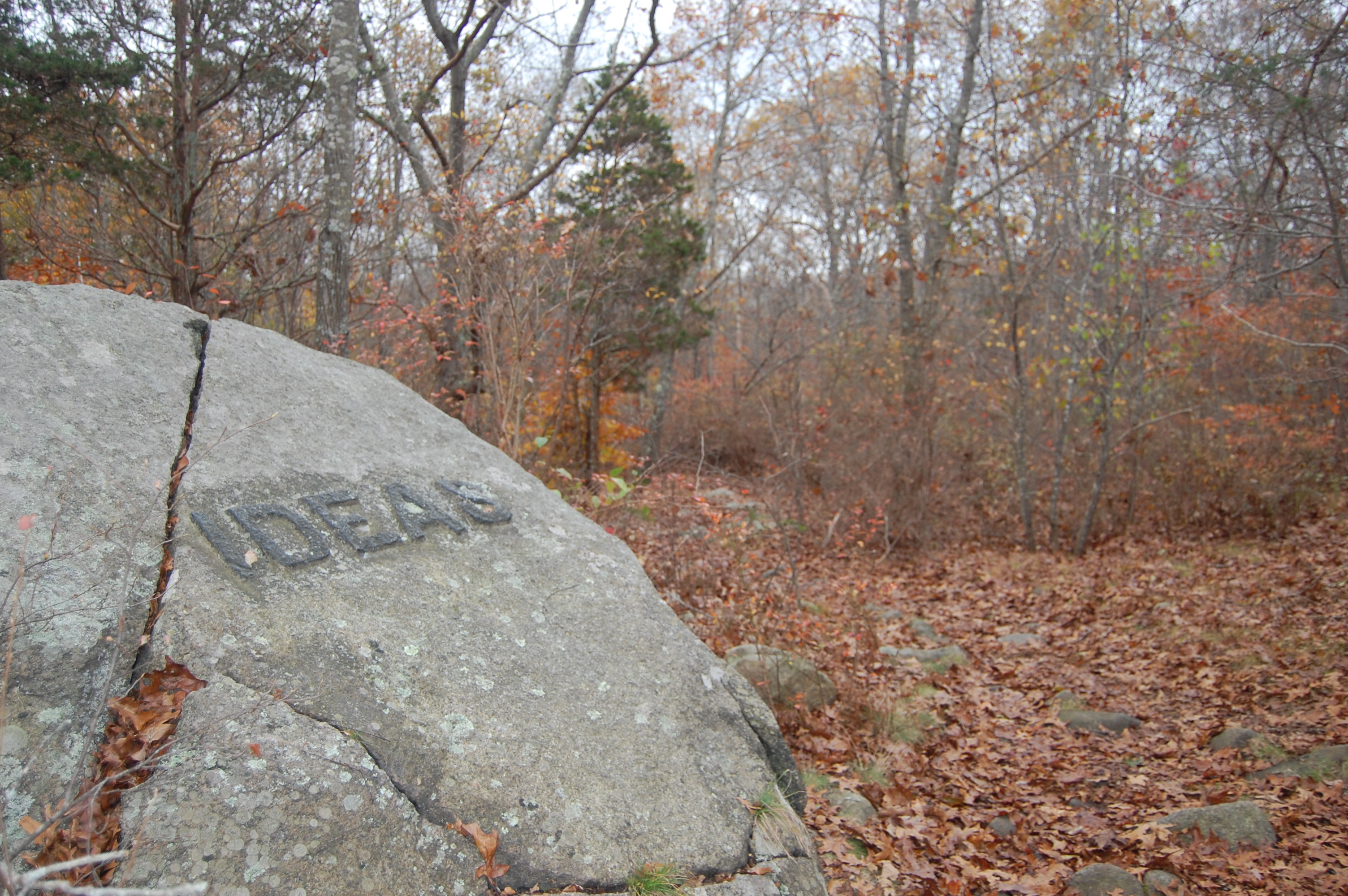 One of Babson's rocks at Historic Dogtown Common