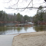 Swimming Area at Pearce Lake in Breakheart Reservation.