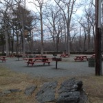 Picnic area at Auburndale Park