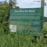 Salt March Information Sign